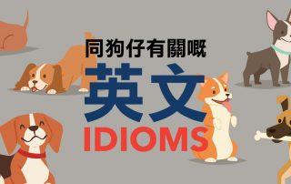 同狗仔有關嘅英文 Idioms