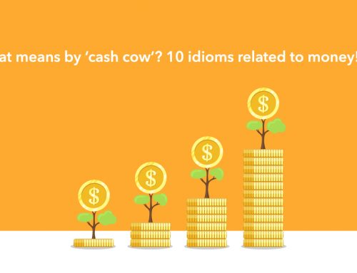 What means by 'cash cow'? 10 idioms related to money!(2)