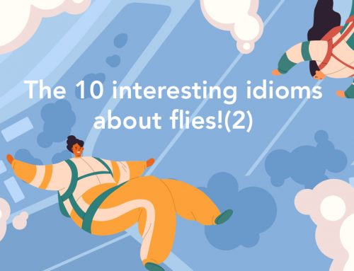 Learning English through idioms : The 10 interesting idioms about flies! (2)