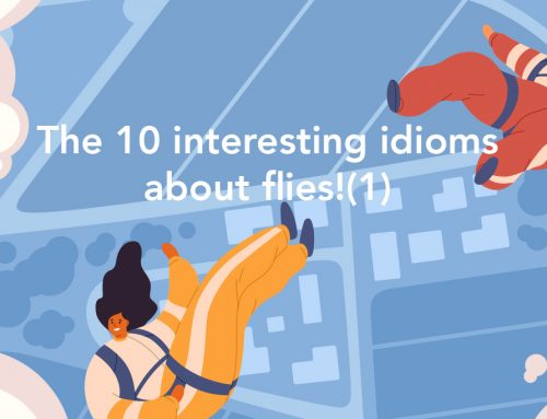 Learning English through idioms : The 10 interesting idioms about flies!(1)