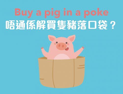 8個同'pig'有關的字