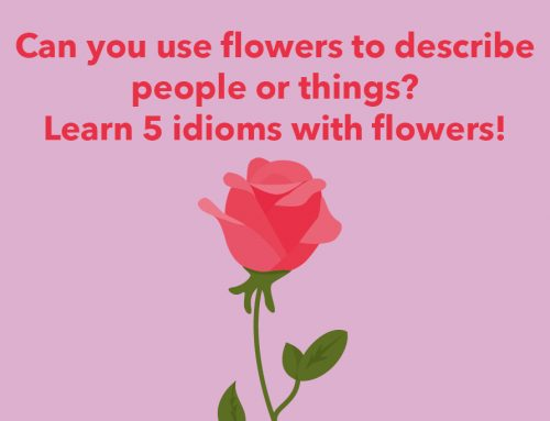 General English: Can you use flowers to describe people or things? Learn 5 idioms with flowers!